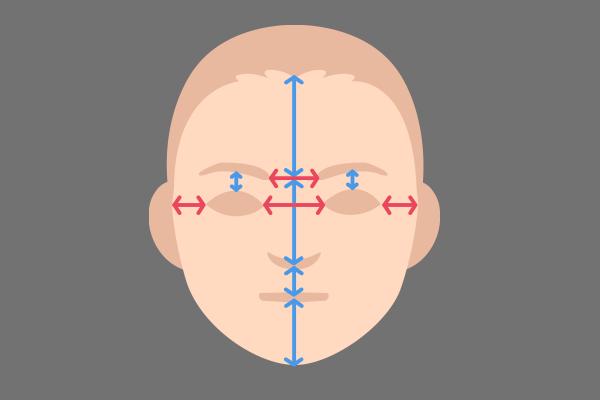 顔の配置バランス