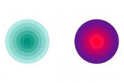 【Webデザイン入門 3】効果的な色の組み合わせ方