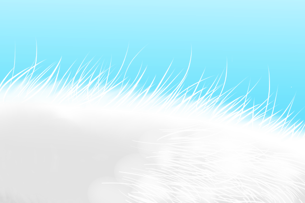 綿毛を描く
