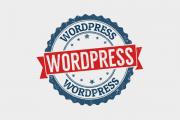 WordPress管理画面のテキストエリアが真っ白になった場合の対処法
