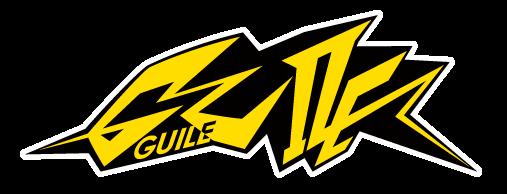 動画広告配信プラットフォーム「GUILE(ガイル)」の画像